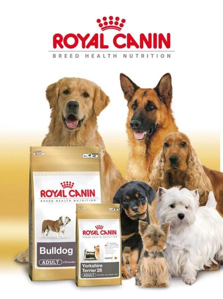PetMart si Royal Canin ofera hrana potrivita pentru toate animalele de companie