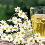 Musetelul ne redă sănătatea și frumusețea