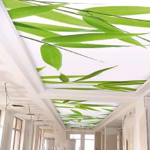 Cele mai bune tavane extensibile din Bucuresti